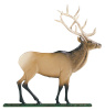 "30"" Painted Elk Weathervane"