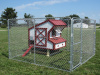 Shown in a 10x10 Dog Kennel